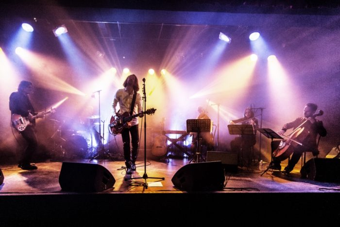 concert-sweet-gum-tree